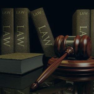 Dolenga Law Clerk